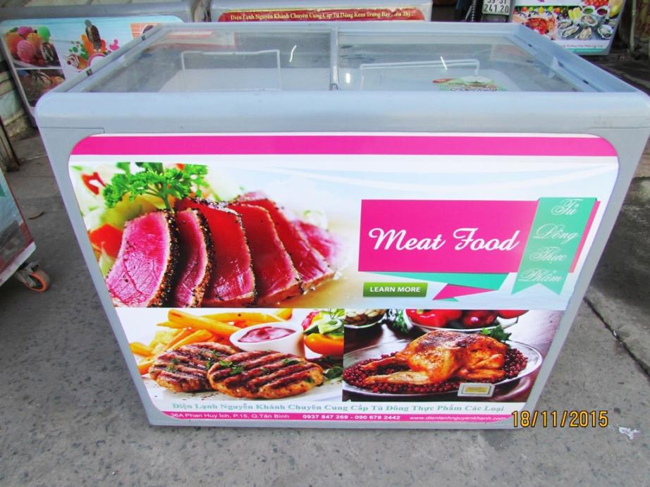 Tủ đông thực phẩm Thái Lan 300 lít (Form bằng)
