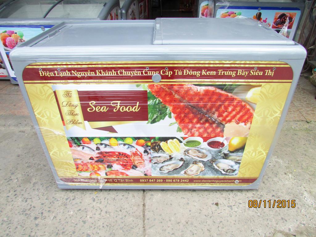 Tủ đông thực phẩm Thái Lan 400 lít (Form bằng)