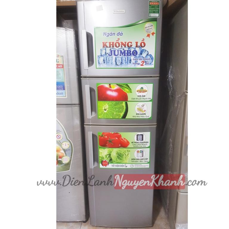 Tủ lạnh Electrolux ETB2603SA-RVN 247 lít