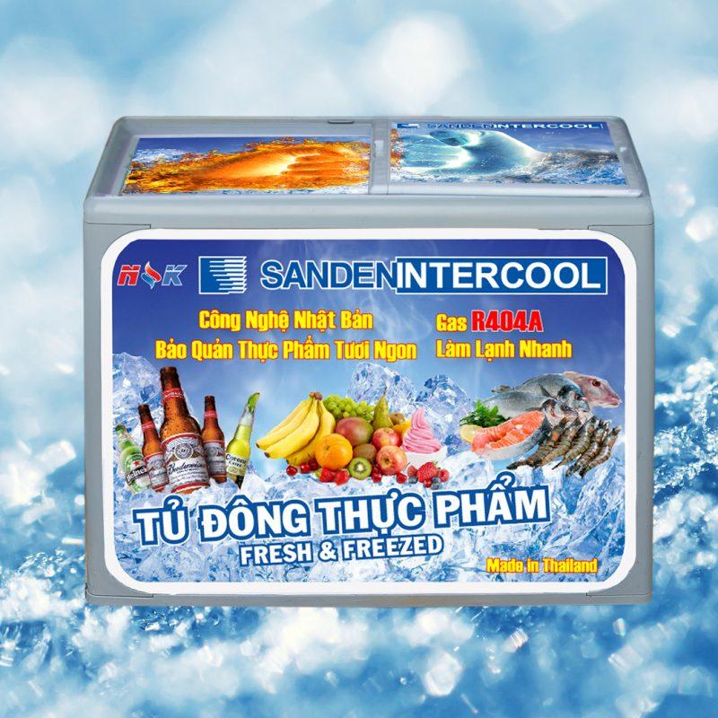 Tủ đông thực phẩm Thái Lan 300 lít (Nắp nhựa bằng)