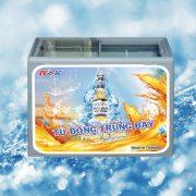 Tủ đông trưng bày Thái Lan 300 lít (Kính bằng)