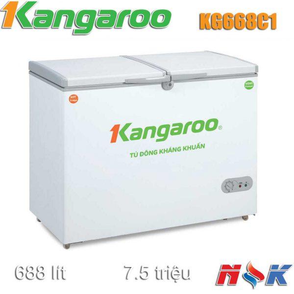 Tủ đông kháng khuẩn Kangaroo KG668C1 668 lít