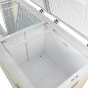 Tủ đông kháng khuẩn Kangaroo KG688A2 668 lít