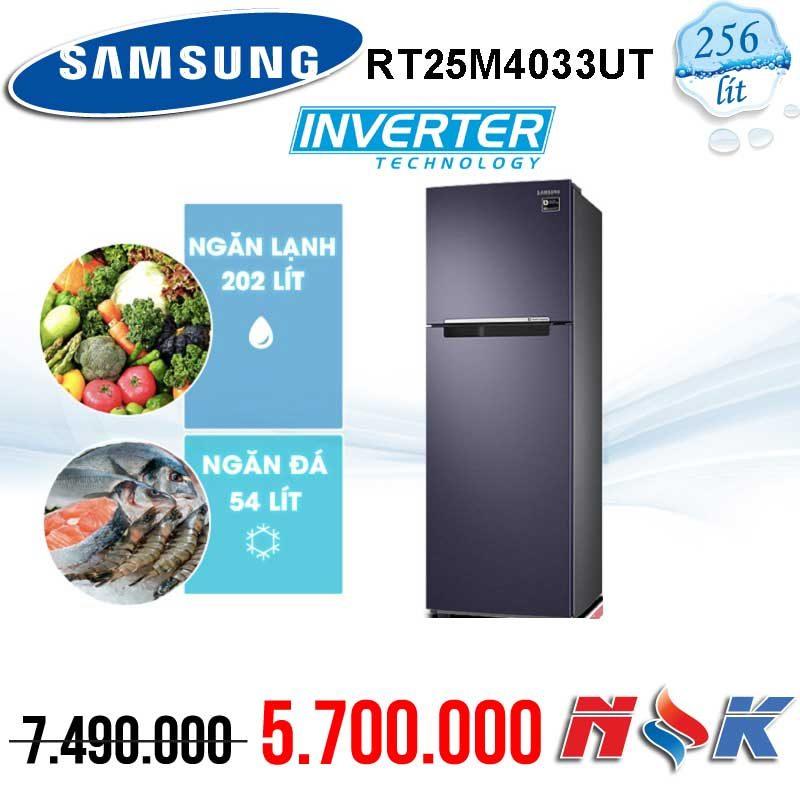 Tủ lạnh Samsung Inverter RT25M4033UT/SV 256 lít