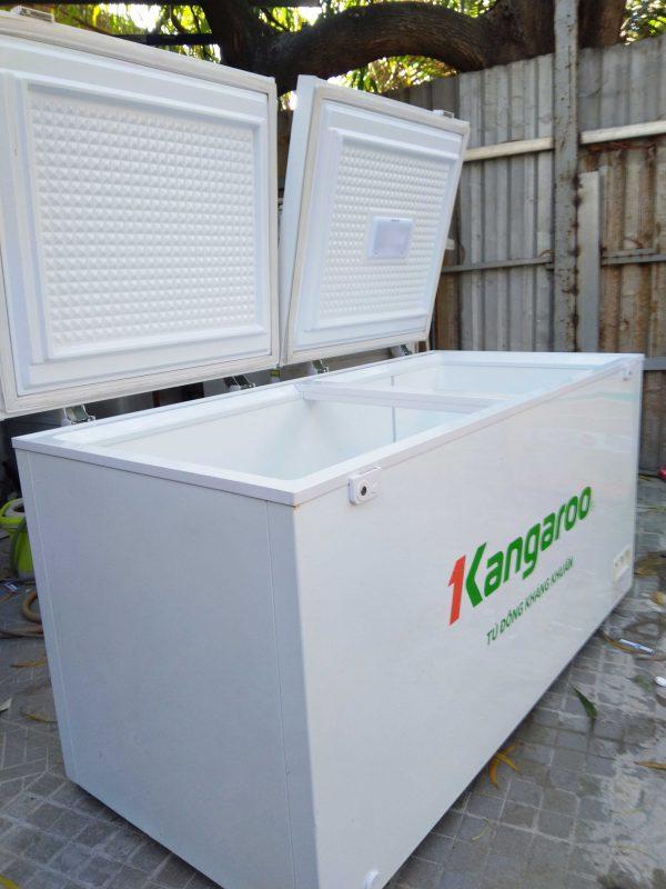 Tủ đông kháng khuẩn Kangaroo KG699C1 699 lít